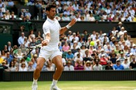 Ruthless Novak Djokovic Brushes David Goffin Aside To Reach Wimbledon Semifinals