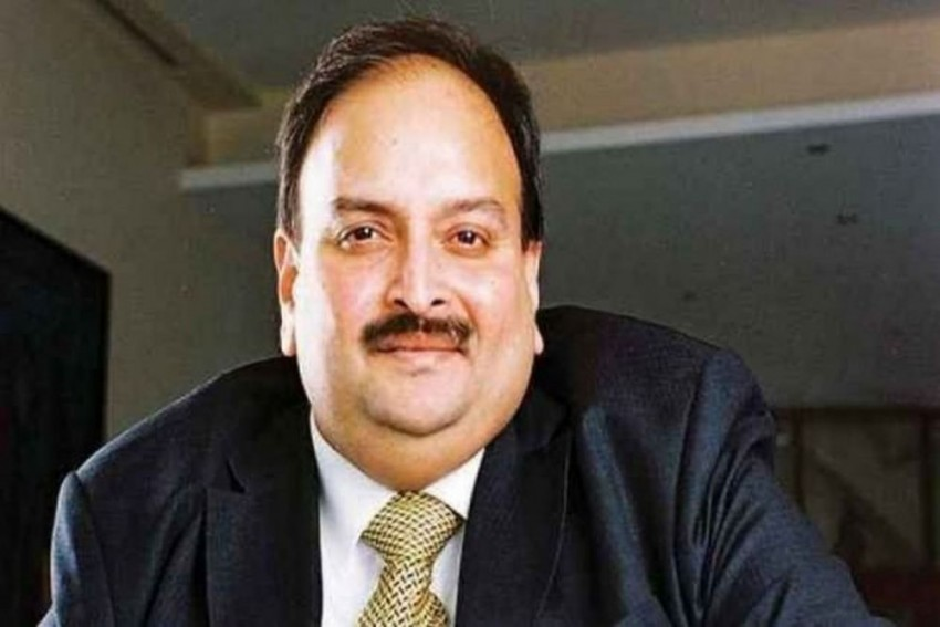 'Untimely Typhoon' In Antigua: Mehul Choksi's Reason For Delay In Sending Legal Documents To Indian Lawyer