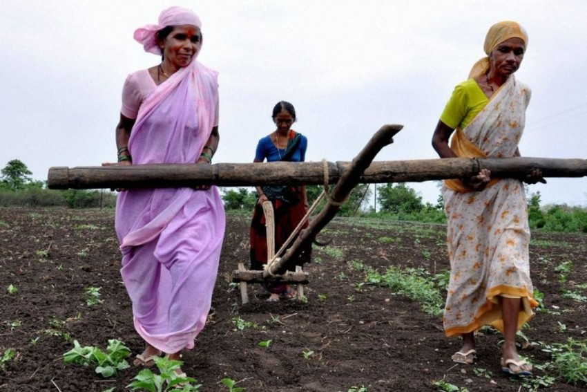 Budget 2019: Focus On Agriculture Sector A Welcome Move, But Better Implementation Required