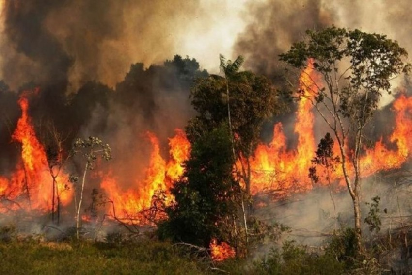 Brazil Rejects G7 Leaders' Aid To Fight Amazon Fires