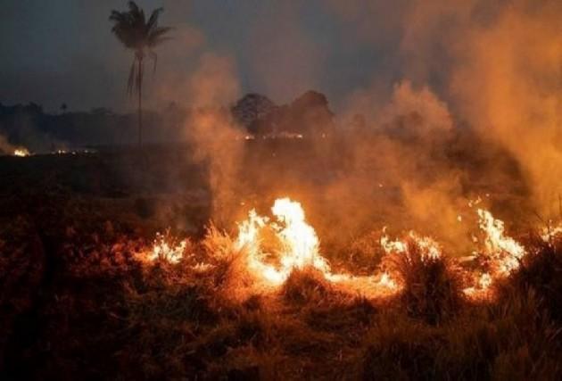 Brazil's Amazon Basin Fires Keep Surging Despite Govt's 'No-Burn' Decree