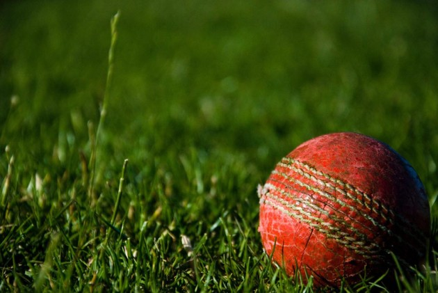 Cricket 'Heat Rules' Call In Response To Climate Change