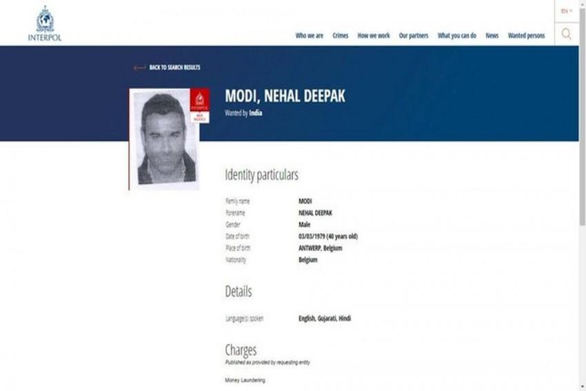 Interpol Issues Red Corner Notice Against Nirav Modi's Brother In PNB Scam Case