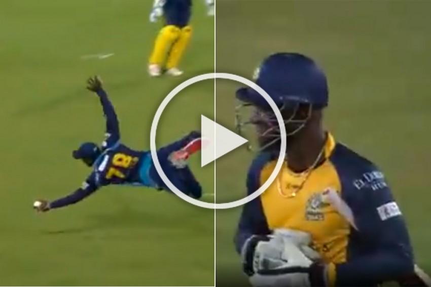 CPL 2019: Mayhem In St Lucia As Jonathan Carter Pulls Off One-Handed Wonder To Stun Darren Sammy At His Own Stadium - WATCH