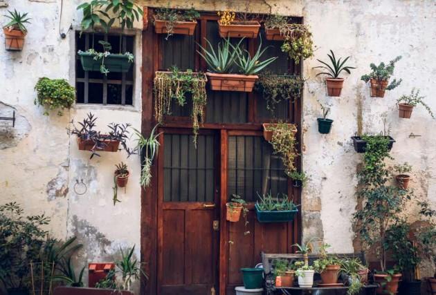 10 Reasons To Start Your Own Kitchen Garden
