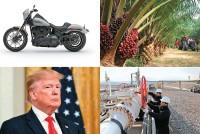 Oil On Troubled Gears