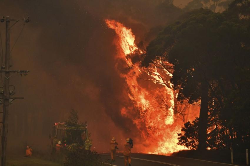 Hockey India Contributes USD 25,000 For Australia Bushfire Victims