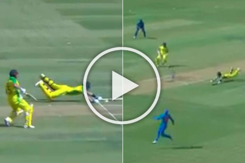 IND Vs AUS, 3rd ODI: Furious Aaron Finch Swears After Deadly Mix-Up With Steve Smith  - WATCH