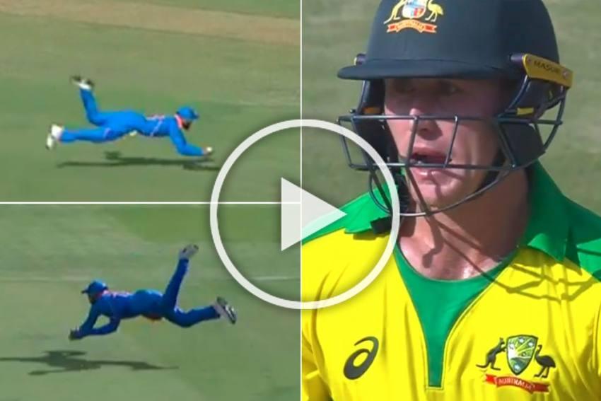 IND Vs AUS, 3rd ODI: Virat Kohli's Unbelievable Catch Stuns Marnus Labuschagne - WATCH