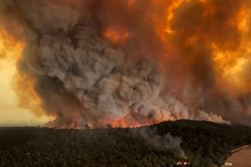 Australia Declares State of Emergency, Orders Evacuation of Residents, Tourists From Bushfire Zones