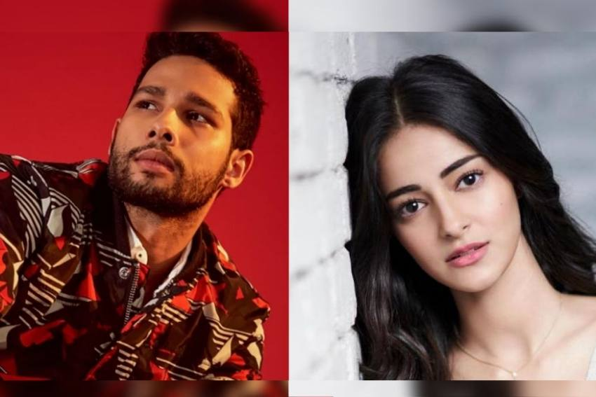 'Their Struggle Begins Where Our Dreams Are Fulfilled': Siddhant Chaturvedi's Reply To Ananya Panday On Nepotism