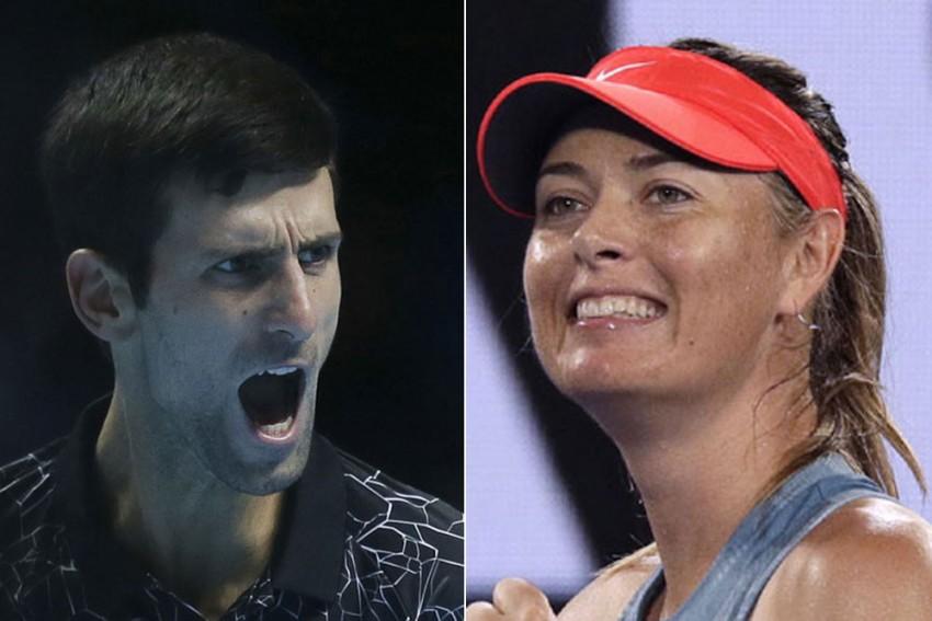 Novak Djokovic Matches Maria Sharapova's Donation To Australia Bushfire Victims