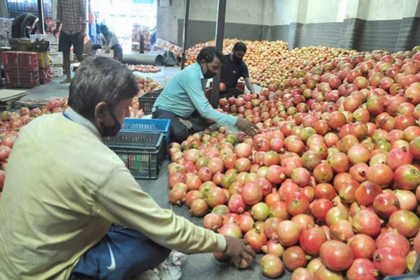 Why Farmers Agitation Has No Impact In Himachal Pradesh?