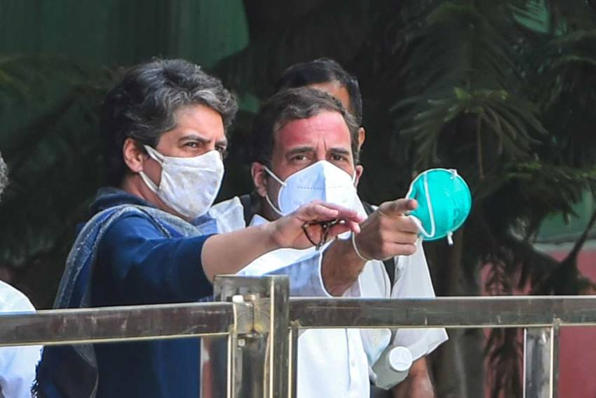 Madhya Pradesh Elections: Rahul Gandhi, Priyanka Among Congress Star Campaigner List