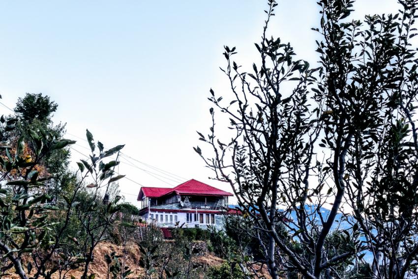 Tourists Skip Shimla Hotels For Rural Homestays