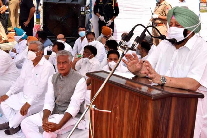 Not Afraid To Resign But Won't Let New Farm Laws Ruin Farmers: Punjab CM Amarinder Singh