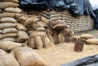 5,200 Bags Of PDS Rice Seized From Two Private Mills In Punjab