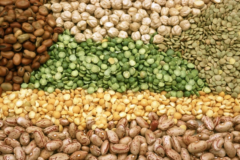 Try Some Pulses On Your Plate