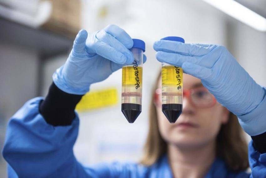 AstraZeneca-Oxford Vaccine Safe: Serum Institute