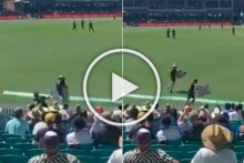 AUS Vs IND: 1st ODI Almost Stopped As Protesters Anti-Adani Protestors Invade Sydney Cricket Ground - WATCH