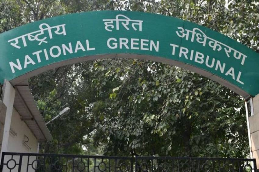 Ahead Of New Year Celebrations, NGT Puts A Ban On Sale, Use Of Firecrackers