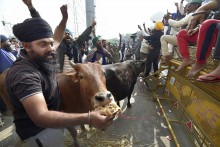 Farmers' Protest Intensifies As More Protesters Gather At Delhi Borders