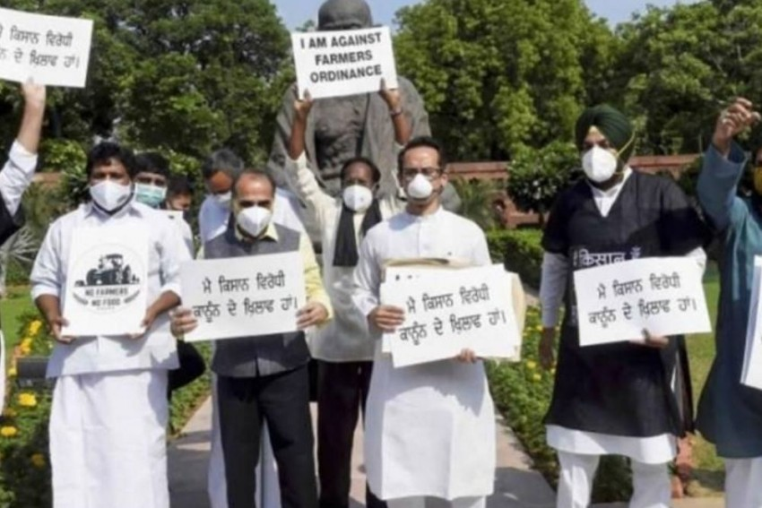 Farm Agitation: MP Cong MLAs Stage Silent Protest Against Centre's Agri Laws