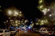 Chittaranjan Park: Delhi's Mini Bengal Turns Salt-And-Pepper 50