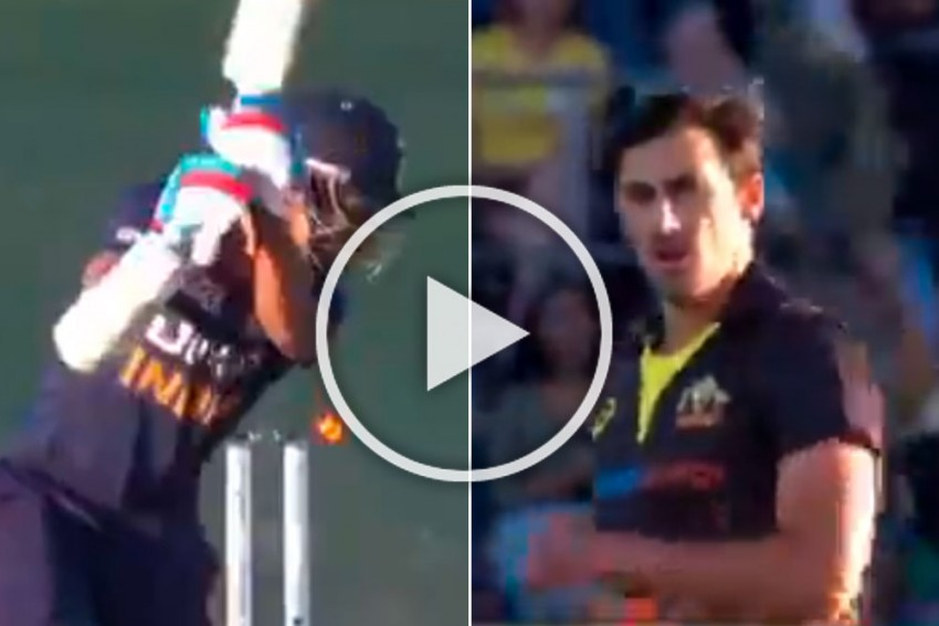 AUS Vs IND, 1st T20I: Mitchell Starc Beauty Makes Mockery Of Shikhar Dhawan - Watch Unplayable Delivery