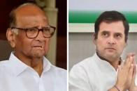 Sharad Pawar Has Failed To Understand Rahul Gandhi: Congress