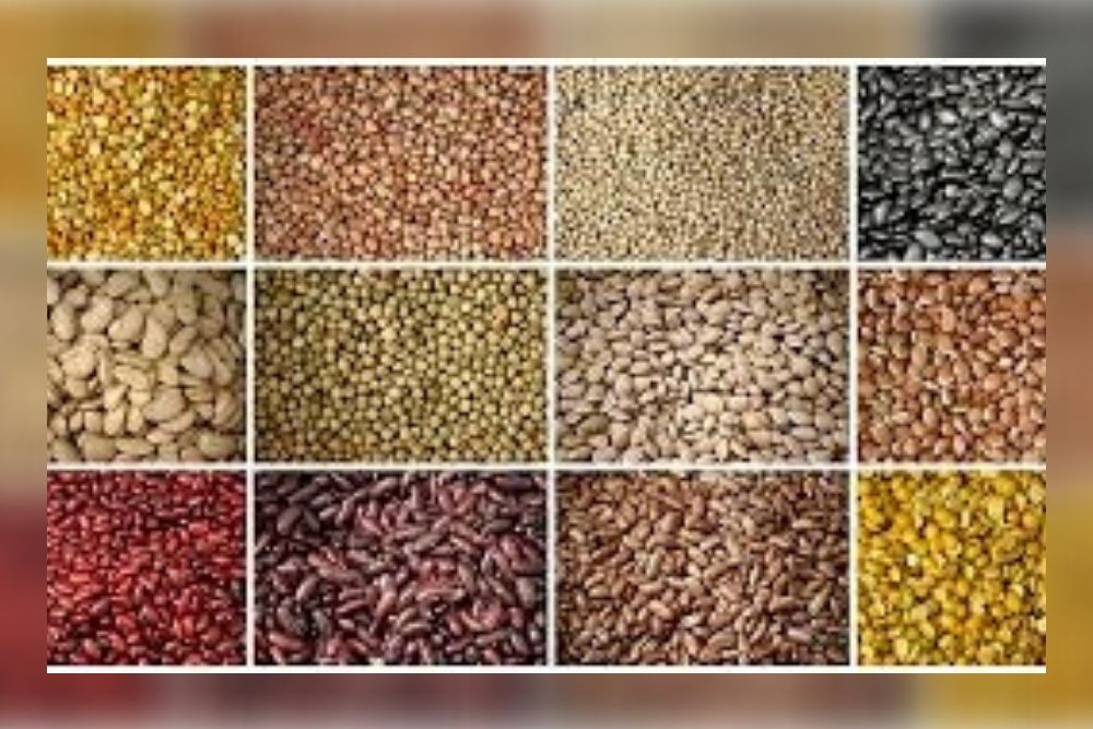 Pulses For A Healthy Body And Mind