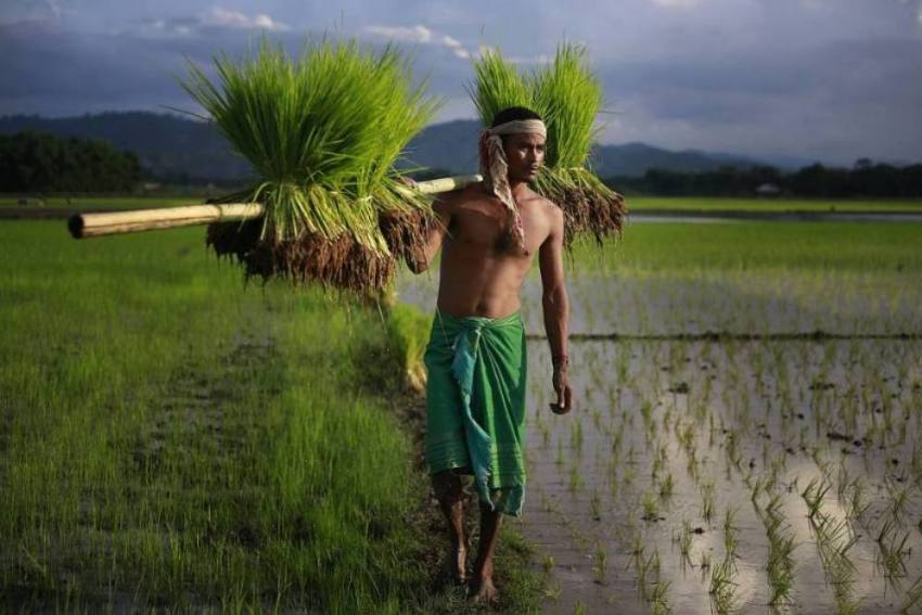Measures In Budget 2020 Consistent With Promise Of Doubling Farmers' Income By 2022