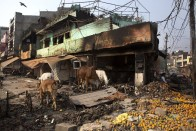 Broken Desks, Burnt Books & Half-charred Boards Tell Sordid Tales Of Vandalised Schools In NE Delhi