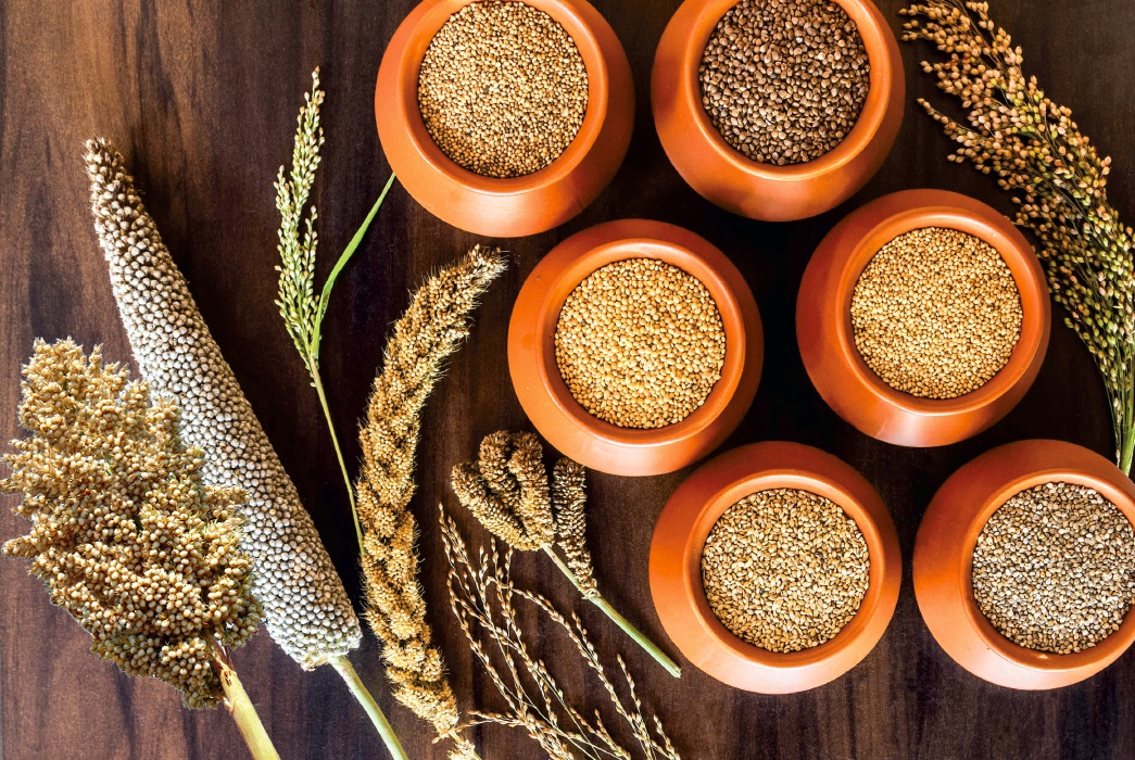 Millets Gaining Ground As Healthy Options For Those Suffering From Lifestyle Diseases