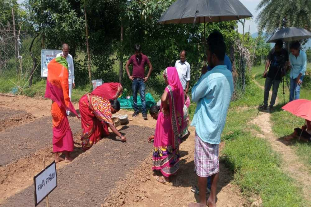 Orissa Sees Potential In 'Nutrition Education on Wheel' Model