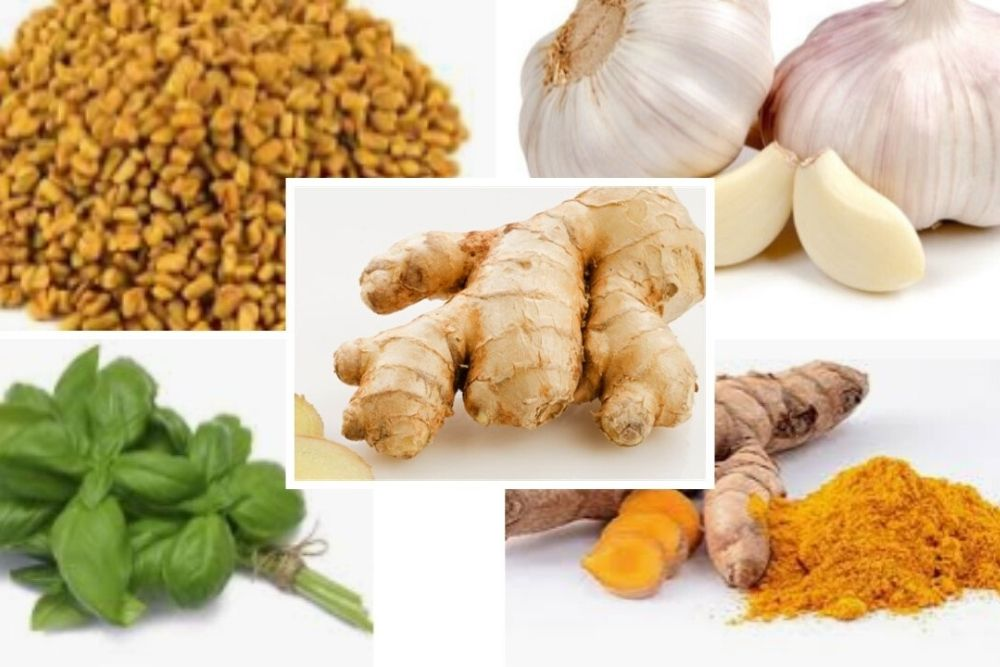 COVID-19: Herbs That Strengthen Your Immune System