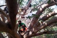 Bizarre Ways Of Sanitising Migrants: Spraying Bleach, Sleeping On Banyan Trees!