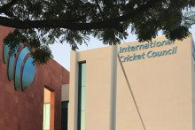 ICC Defers Decision On T20 World Cup Till June 10