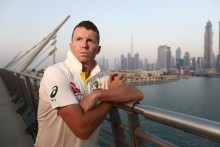 Former Australia Pacer Peter Siddle Signs Two-Year Contract With Tasmanian Tigers