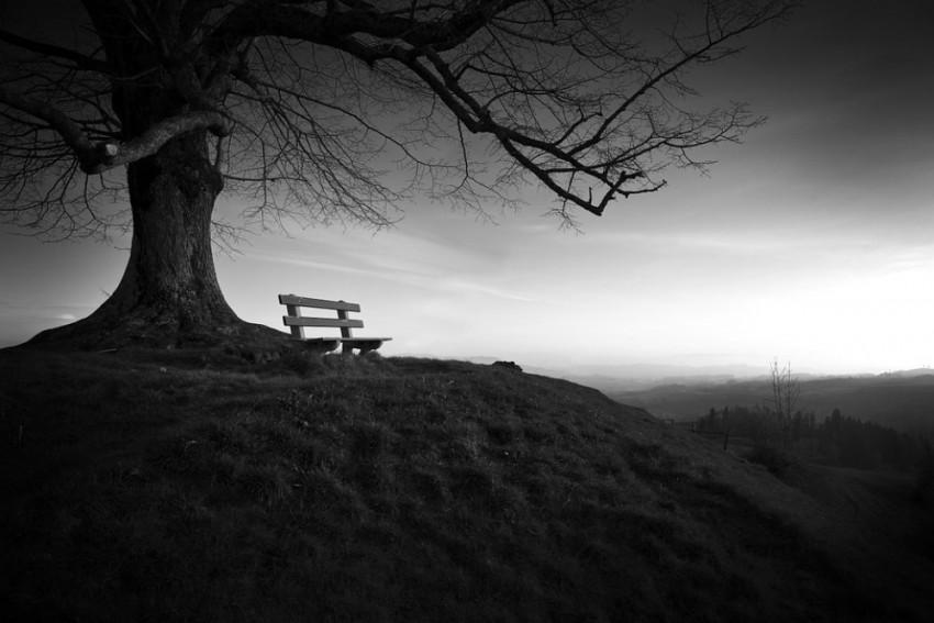 Poetics Of Solitude, Songs Of Silence