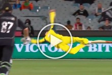 Steve Smith's 31st Birthday: Cricket Australia Puts Up Video Of Sensational Catches Taken By Former Captain - WATCH