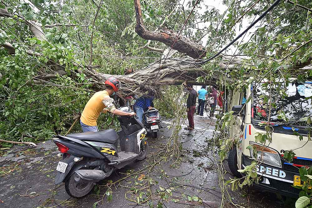 Amphan Diary | Of Roti, Kapda, Makaan And Internet; Kolkata's Fightback Has Begun