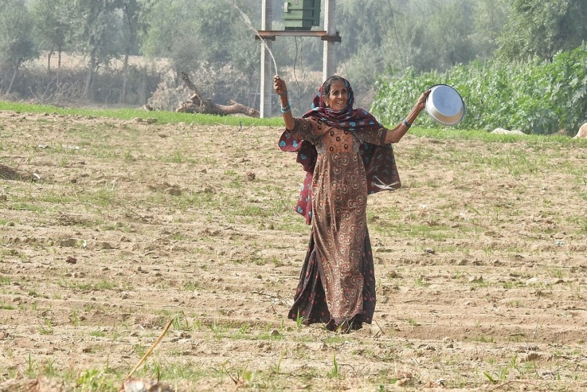 From Beating 'Thalis' To Revving Tractors: Farmers Try Innovative Ways To Keep Locusts Away