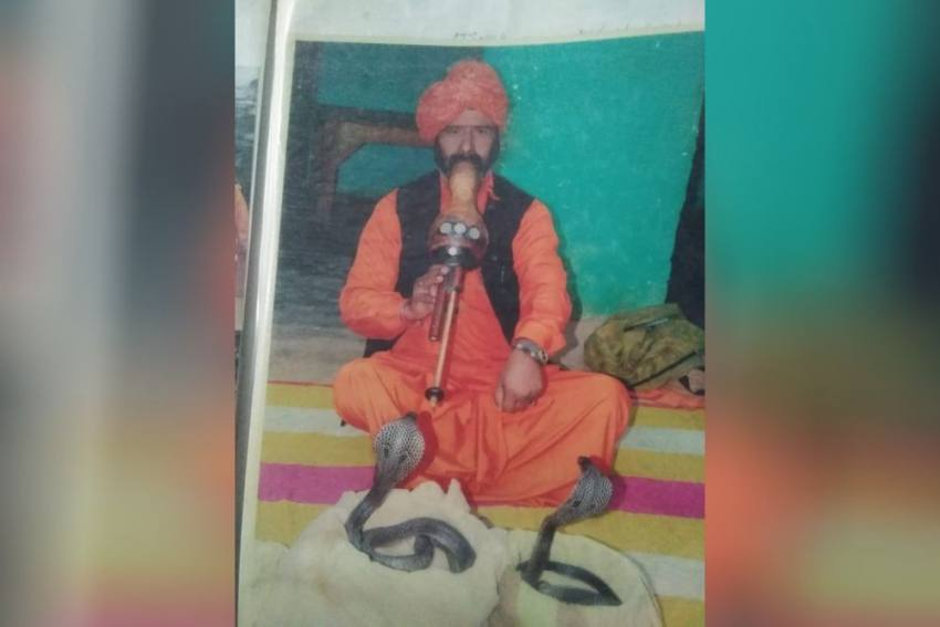 Though VIPs Invite Us On Naga Panchami, The Tradition Is Losing Significance, Say Delhi's Snake Charmers