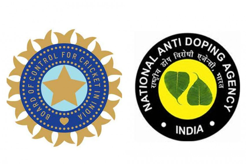 Anti-Doping Measures At IPL: NADA Likely To Outsource Sample Collection