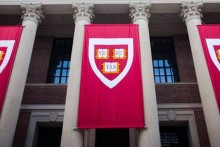 Harvard, MIT Sue US Authorities Over New Immigration Rule For Foreign Students: Report