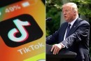 US 'May Be Banning' TikTok App, Says Trump Amid Reports Of Takeover By Microsoft