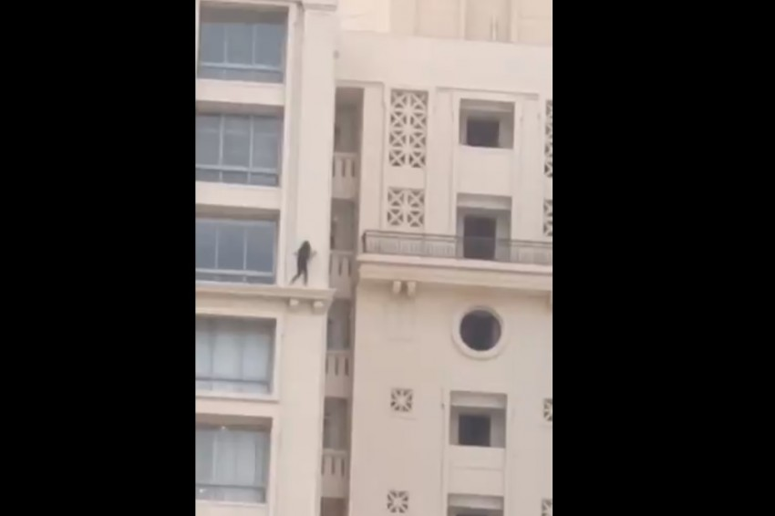 Chennai School Girl Does High-risk Cat Walk On 23rd Floor's Ledge; Police Serve Her Warning