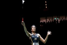 PV Sindhu Feels Players Need To Get Used To Playing In Empty Stadiums