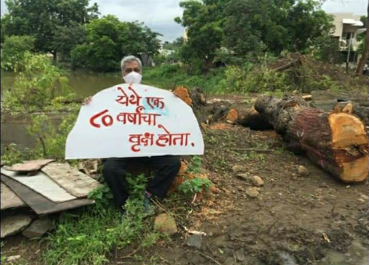 70 Trees Lopped Off, 170 More Could Face Axe For Road Widening Near Gandhi Ashram